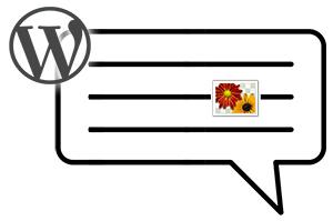 Как вставить картинку в комментариях WordPress без плагина