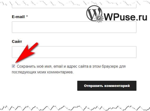 Пункт «Сохранить моё имя, email и адрес сайта в этом браузере для последующих моих комментариев»