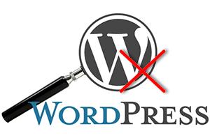 Как отключить поиск в WordPress