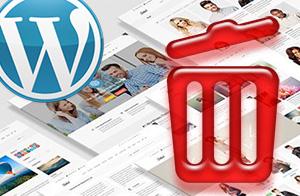 Как удалить неиспользуемые темы в WordPress