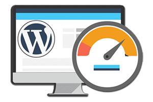 Как в WordPress отслеживать скорость работы сайта