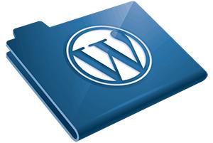 Где находятся файлы используемой WordPress темы